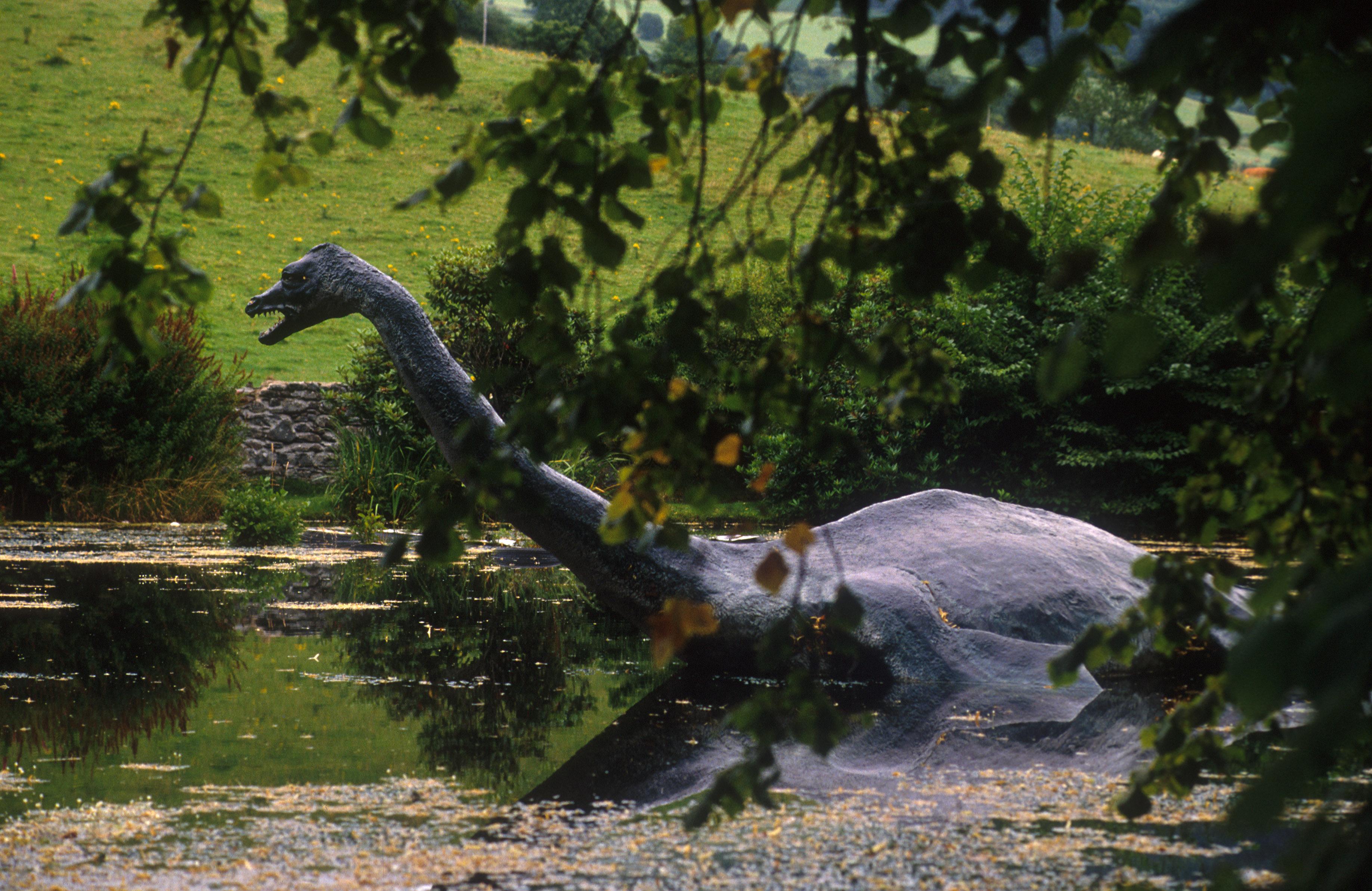 Nessie in Drumnadochit