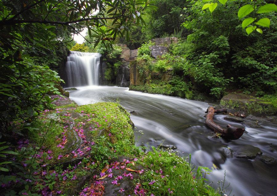 Jesmond Dene - een oase van rust
