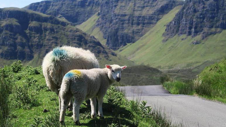 Lente in Schotland