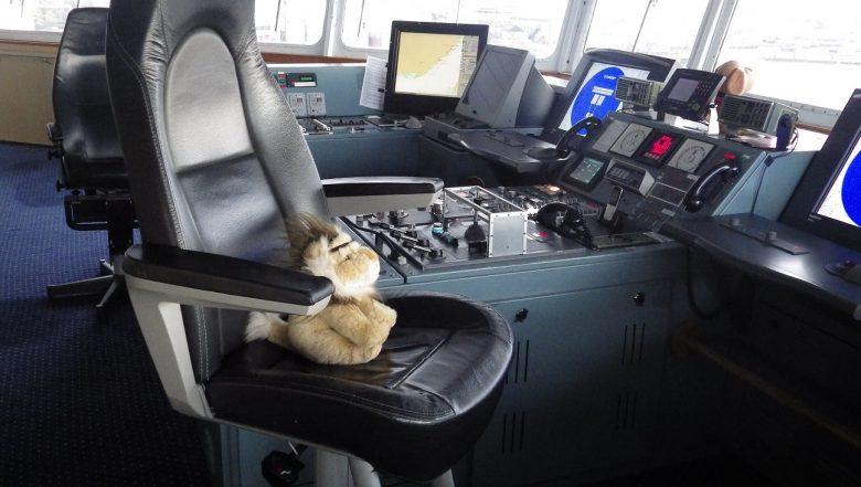 Knuffelleeuw aan boord van KING Seaways