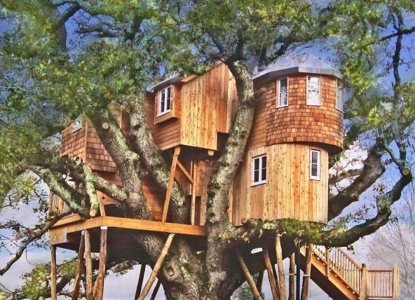 Boomhut Engeland - Treetops Treehouse - Chulmleigh, Devon