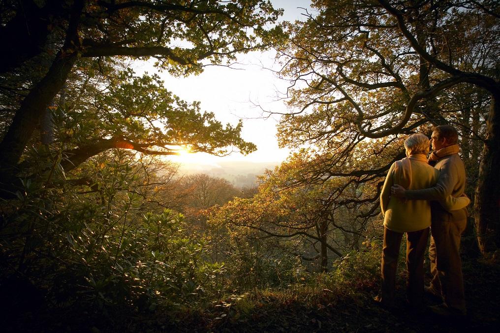 Snowdonia National Park Planning – Snowdonia National Park Planning
