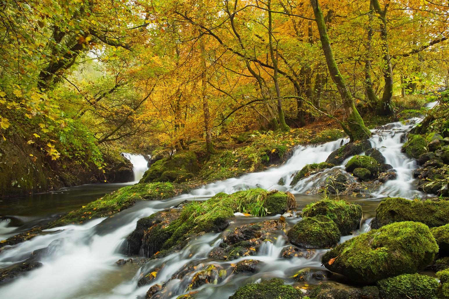 Herfst Schotland - Bala Lake in Snowdonia National Park