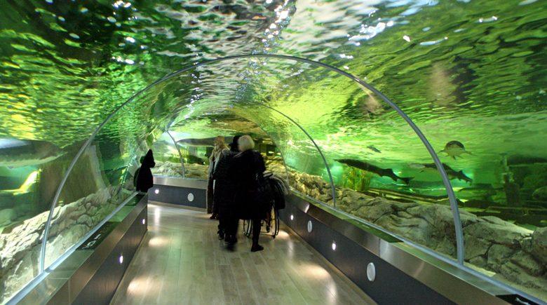 Museum Klaipeda