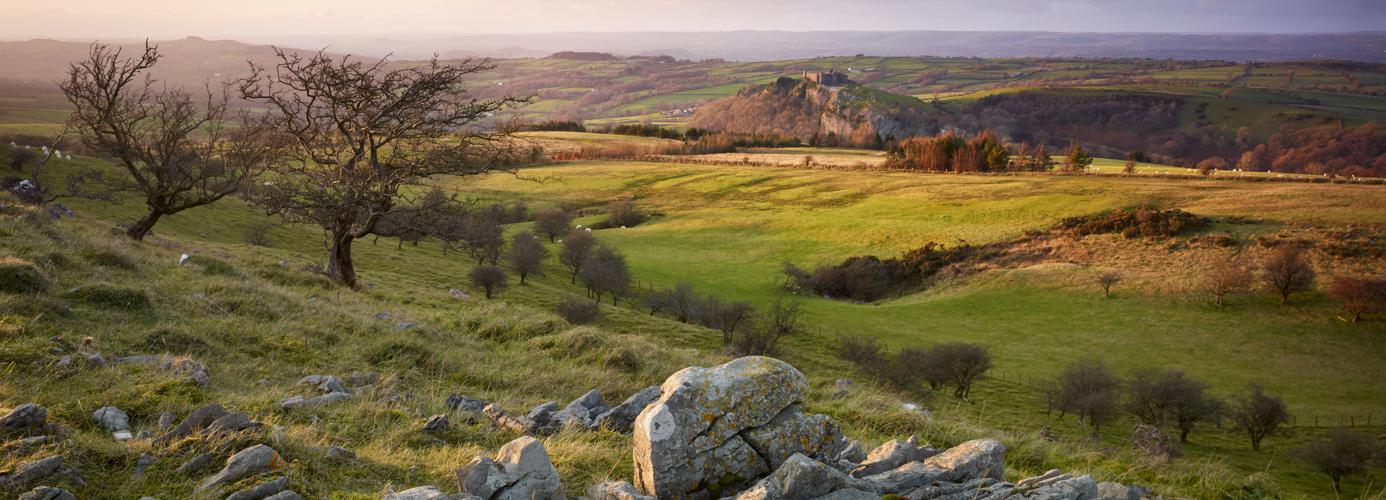 Middeleeuws Wales